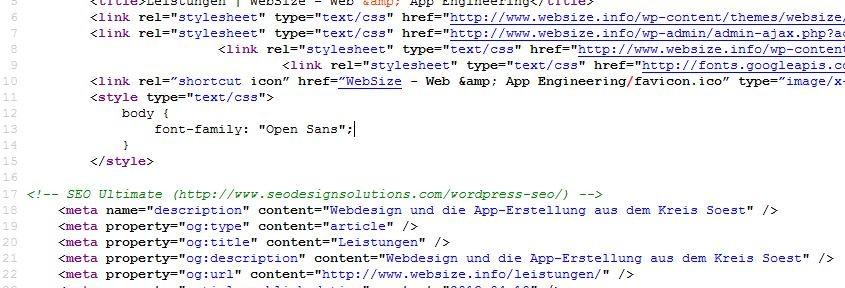 seo-onpage-websize